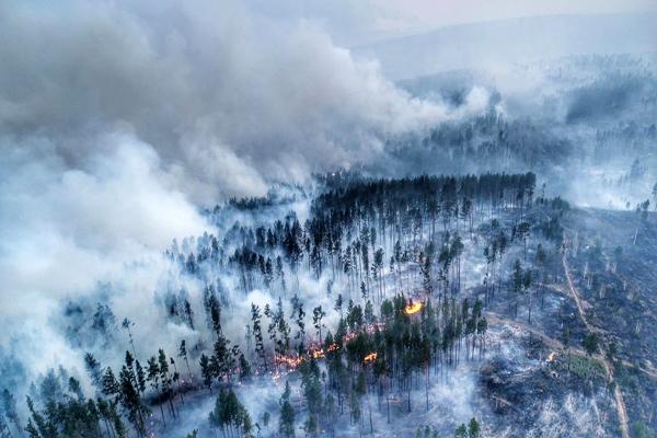 В Сибири горит миллион гектаров леса